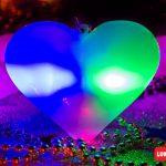 Collar led luminoso forma Corazón blanco y luz multicolor